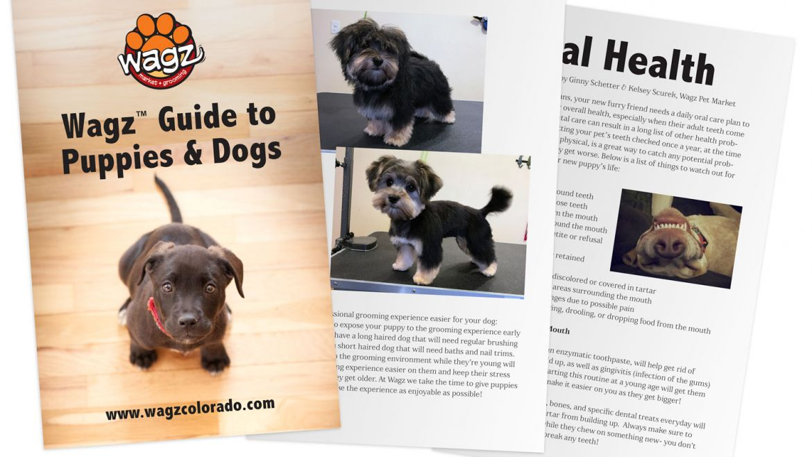 New Puppy/Dog Booklet